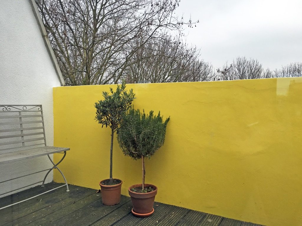 bright yellow terrace wall styled by Absolute Project Management