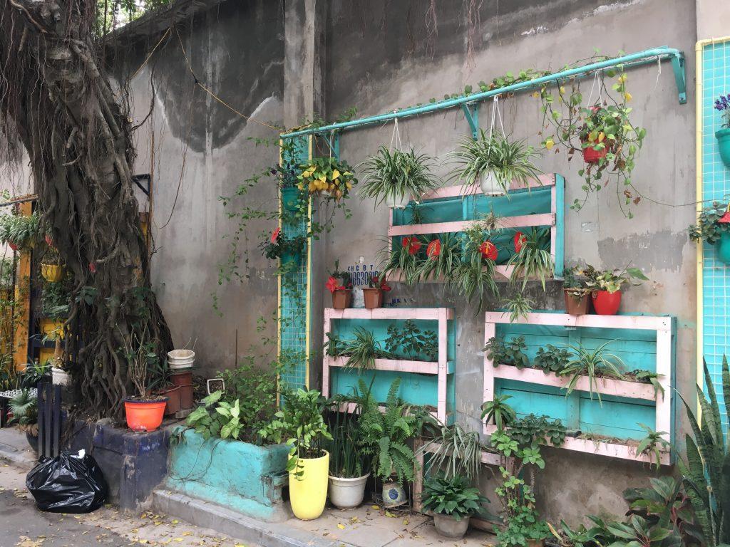 Turquoise hanging garden