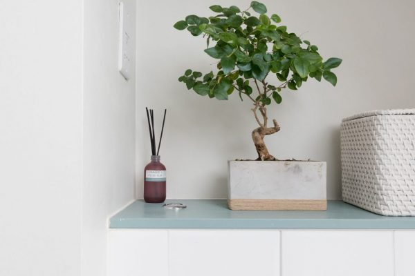 Cute little bathroom accessories styled by Absolute project management