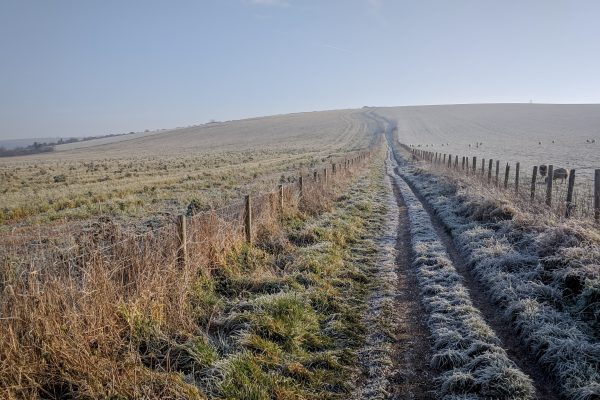 South downs in winter