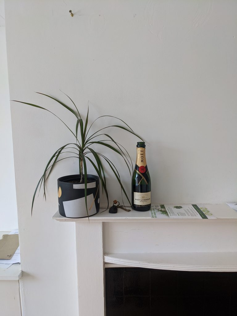 Mantelpiece with keys, houseplant and champagne - after moving in to a terraced house in Hove.