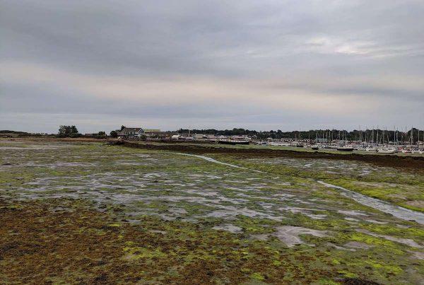 Bembridge landscape shot. Absolute Project Management.