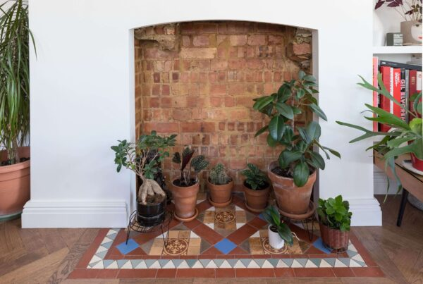 Styled indoor plants within fireplace, hearth fitted with reclaimed feature tiles. Renovation by Absolute Project Management.